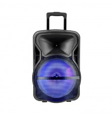 50W Rechargeable Trolley Speaker With One Wireless + One Wired Microphone RF Control RGB 15 inch